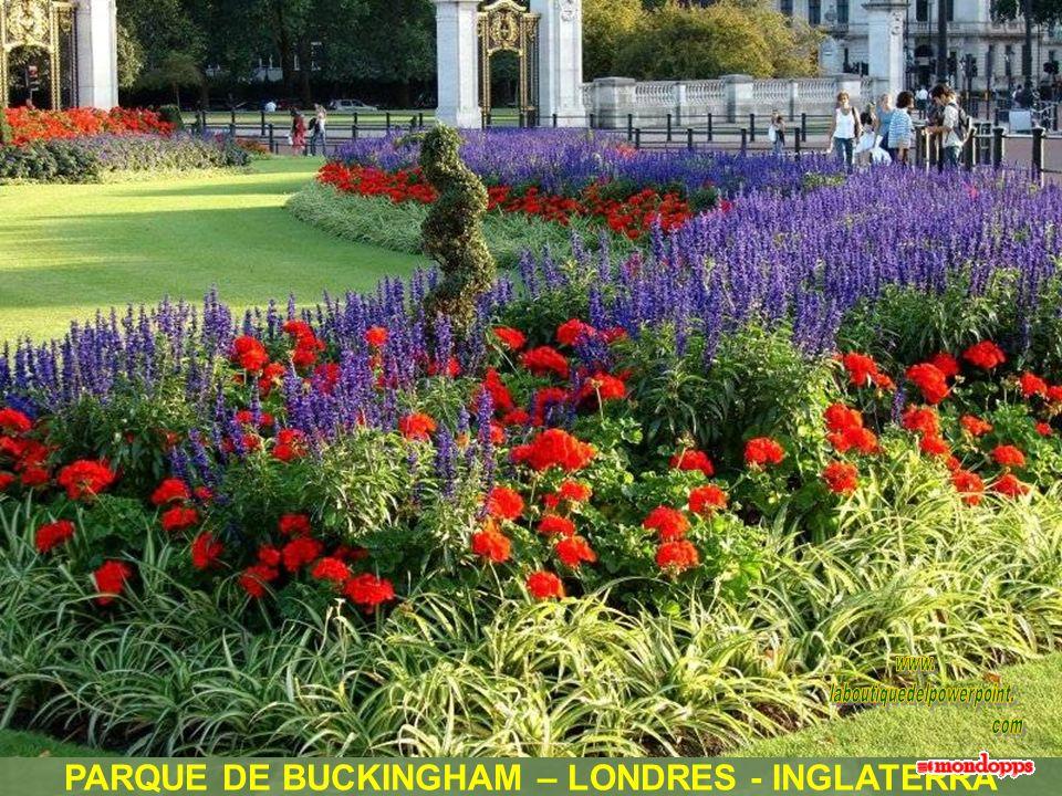 PARQUE DE BUCKINGHAM – LONDRES - INGLATERRA