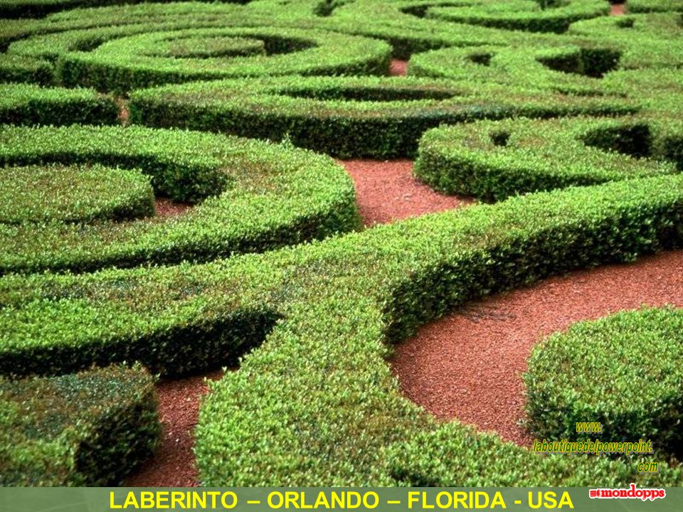 LABERINTO – ORLANDO – FLORIDA - USA