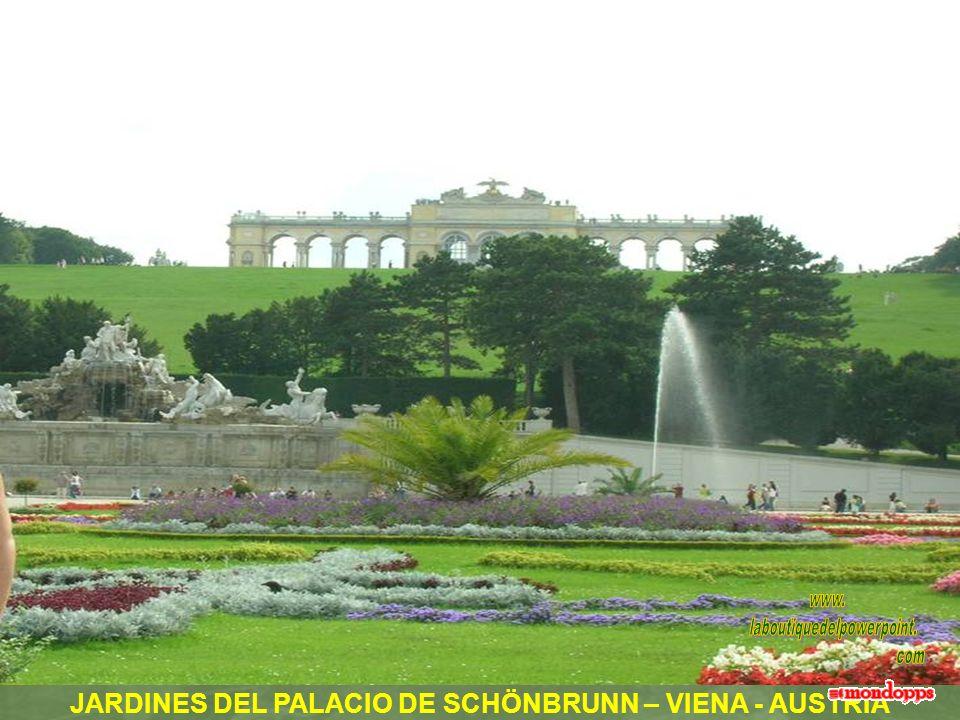 JARDINES DEL PALACIO DE SCHÖNBRUNN – VIENA - AUSTRIA