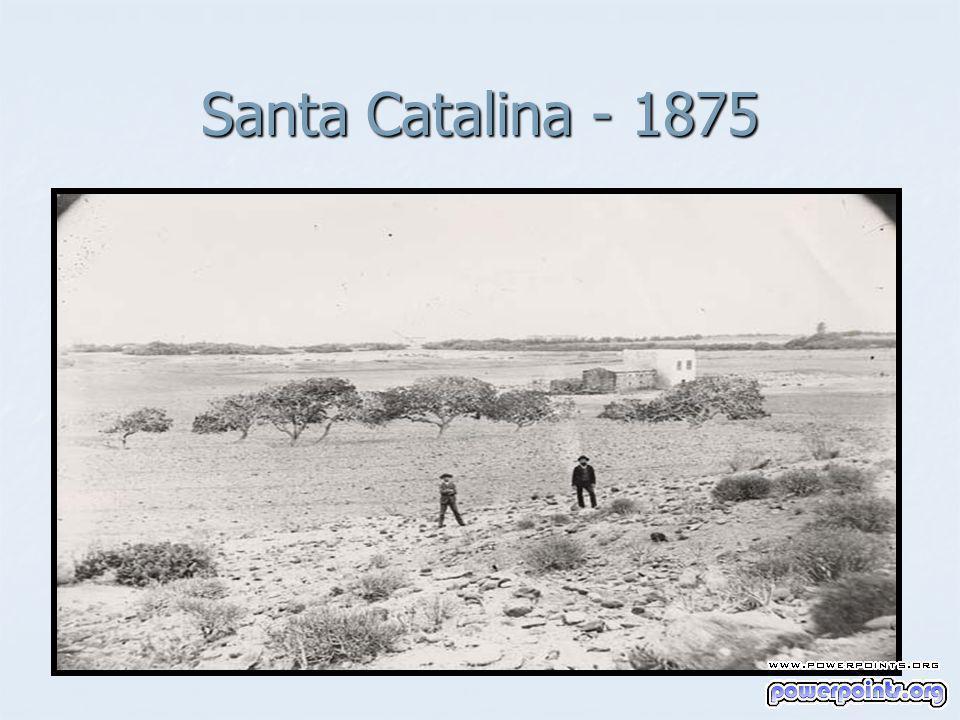 Santa Catalina - 1875