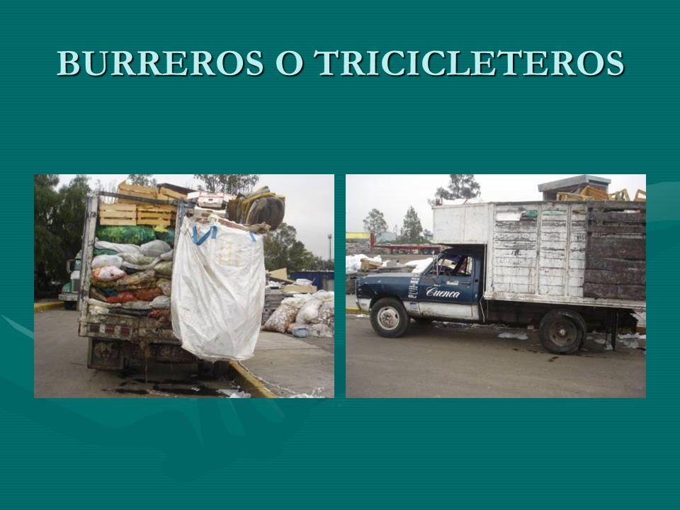 BURREROS O TRICICLETEROS