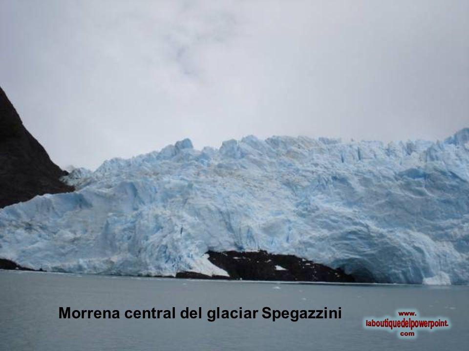 Morrena central del glaciar Spegazzini