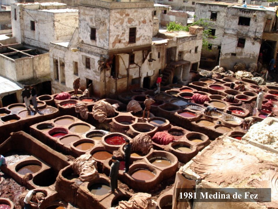 1981 Medina de Fez