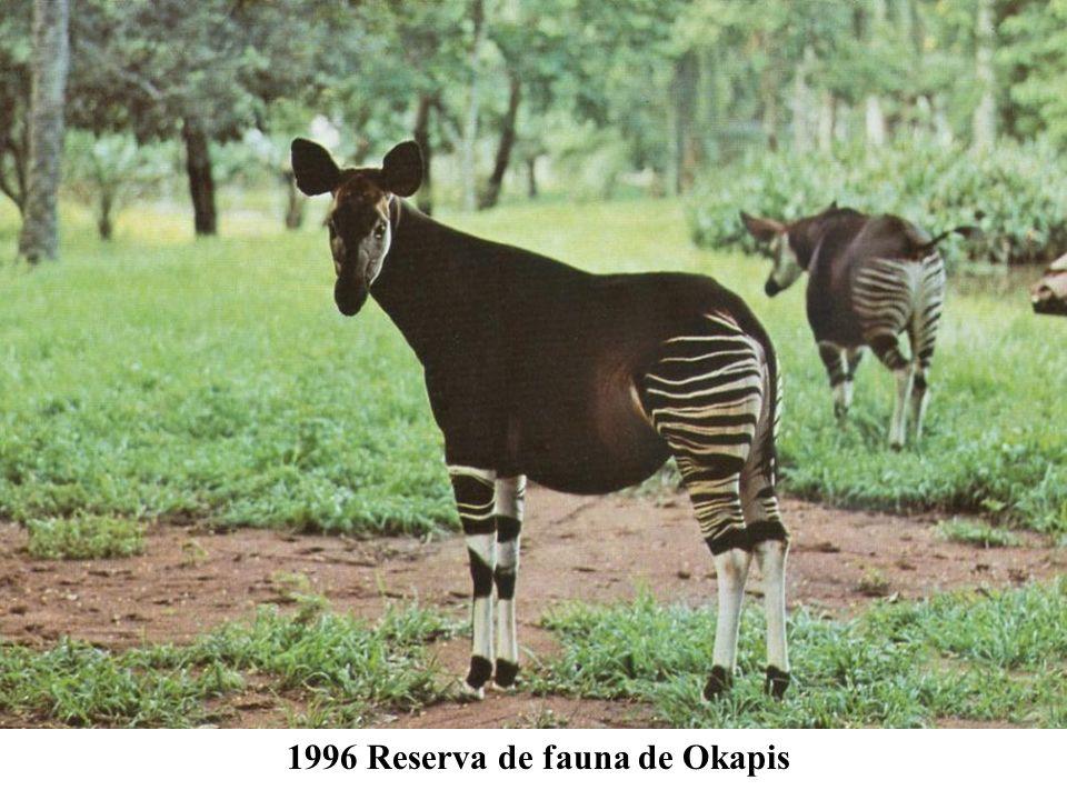 1996 Reserva de fauna de Okapis