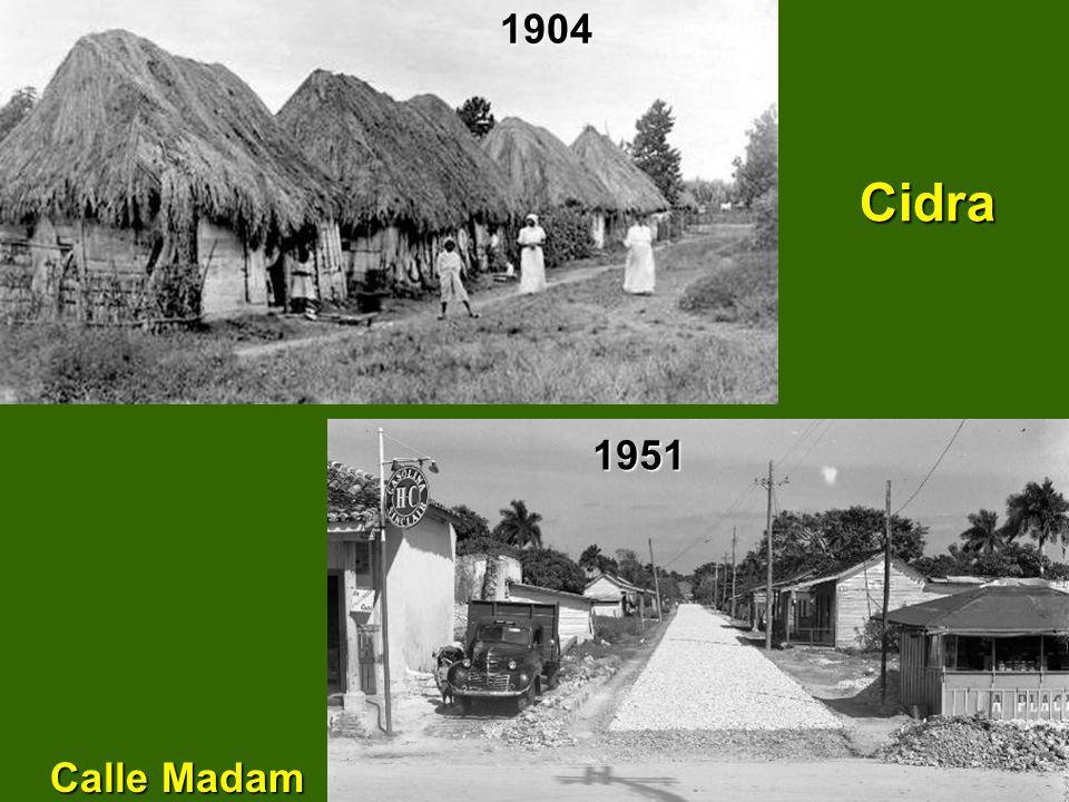 1904 Cidra Calle Madam 1951
