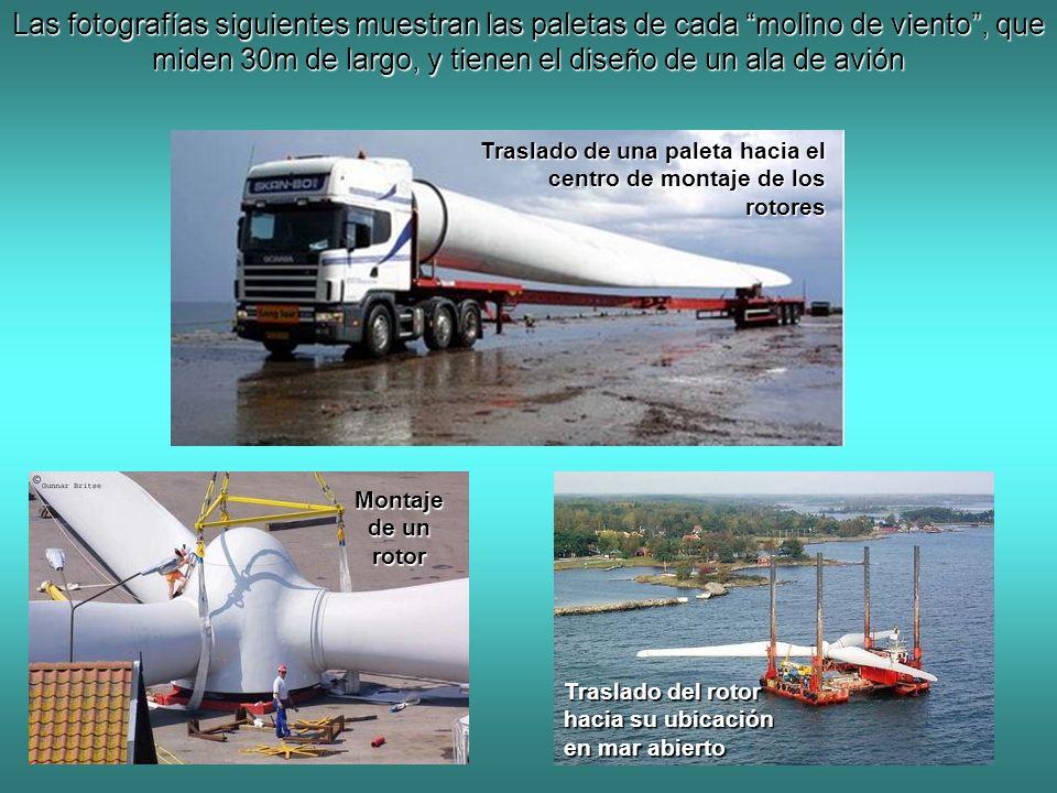 Las fotografías siguientes muestran las paletas de cada molino de viento , que miden 30m de largo, y tienen el diseño de un ala de avión