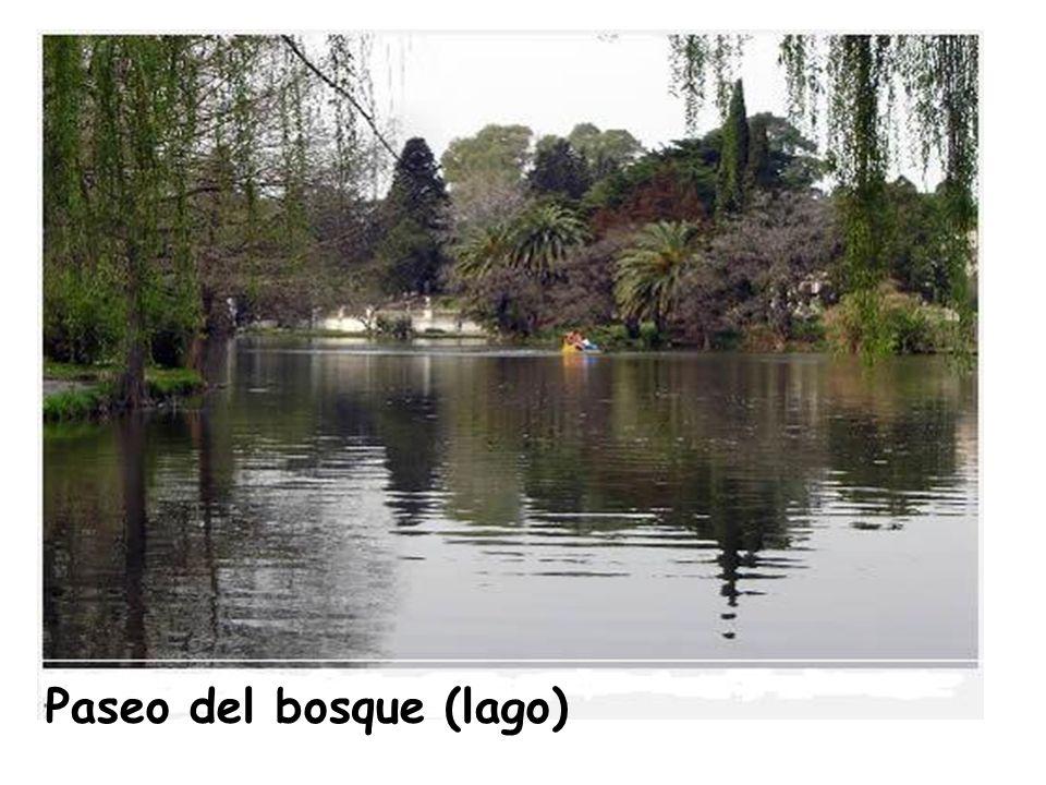 Paseo del bosque (lago)