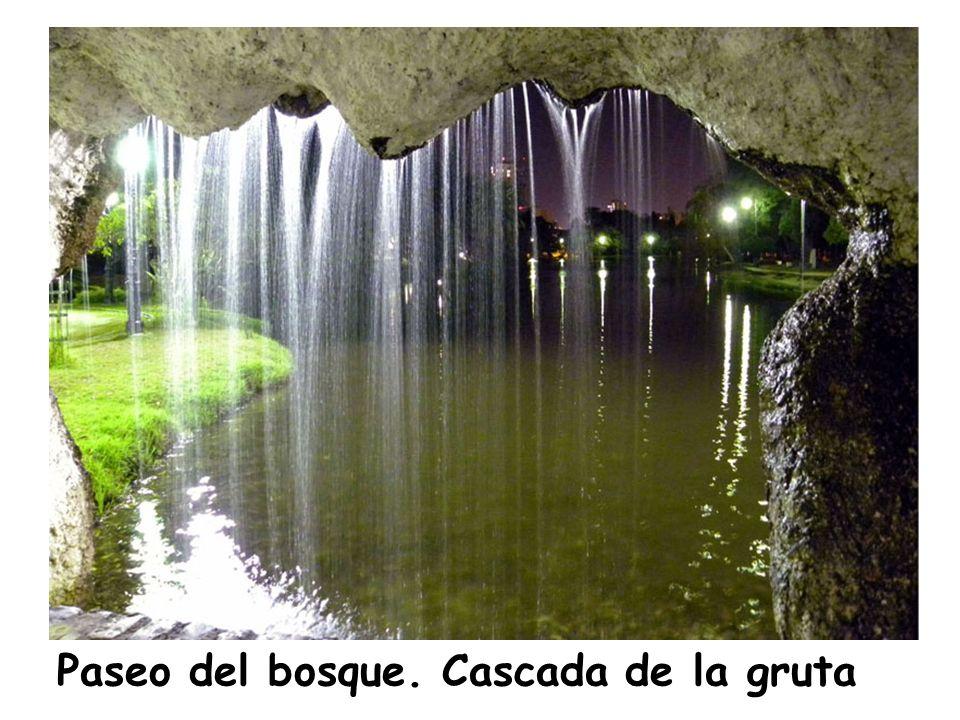 Paseo del bosque. Cascada de la gruta