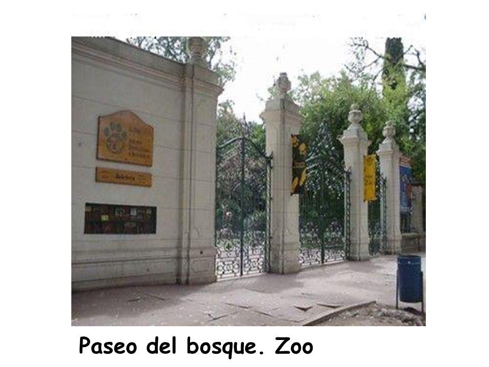 Paseo del bosque. Zoo