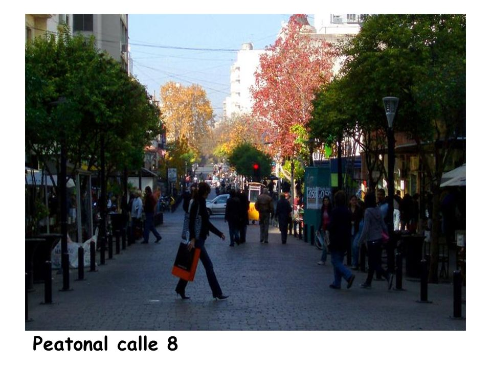 Peatonal calle 8