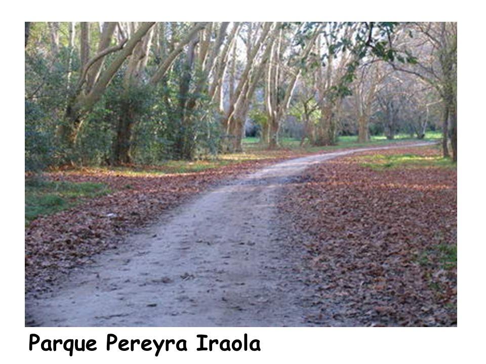 Parque Pereyra Iraola