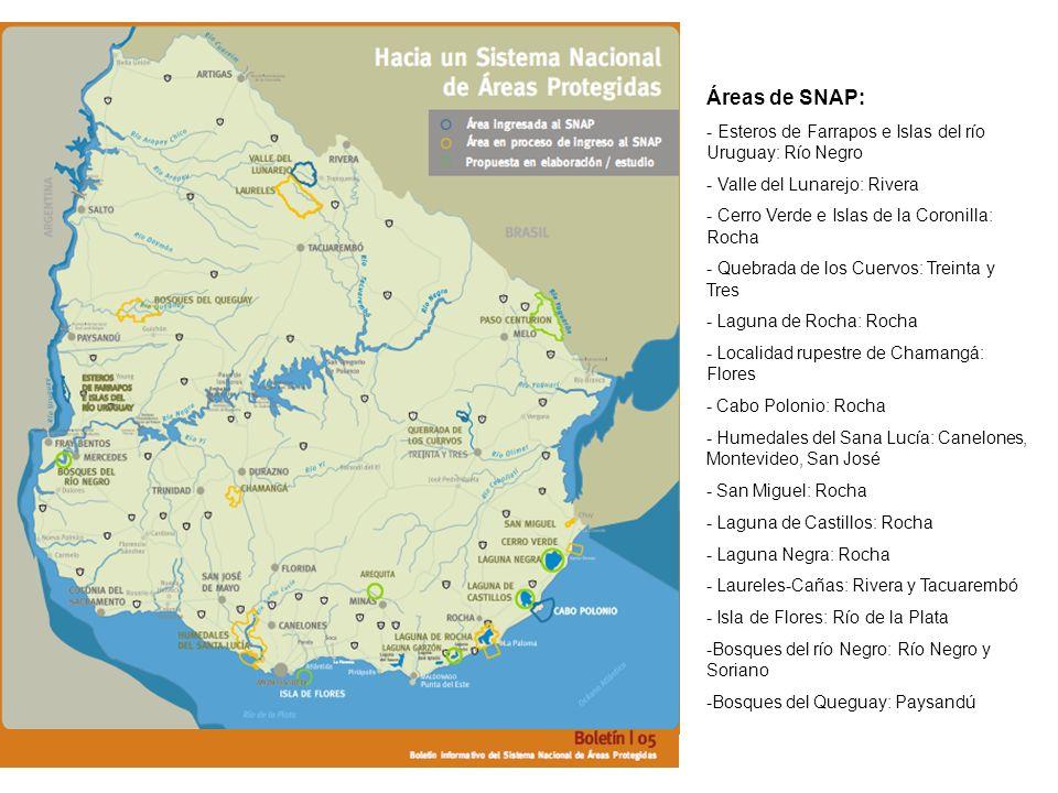 Áreas de SNAP: - Esteros de Farrapos e Islas del río Uruguay: Río Negro. - Valle del Lunarejo: Rivera.