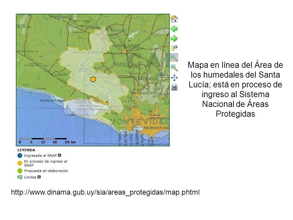 Mapa en línea del Área de los humedales del Santa Lucía; está en proceso de ingreso al Sistema Nacional de Áreas Protegidas