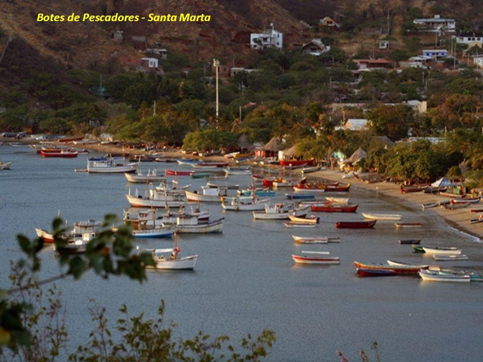 Botes de Pescadores - Santa Marta