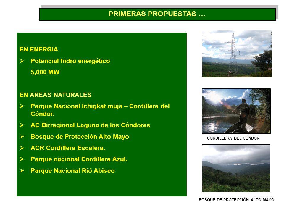 PRIMERAS PROPUESTAS … EN ENERGIA Potencial hidro energético 5,000 MW