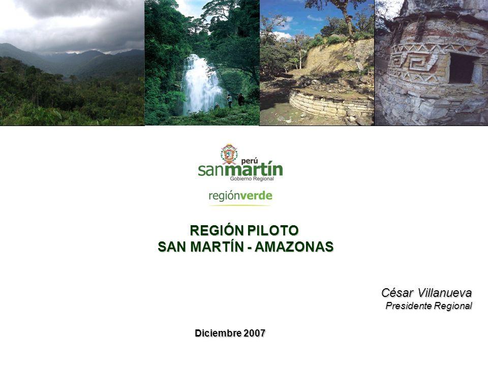 REGIÓN PILOTO SAN MARTÍN - AMAZONAS