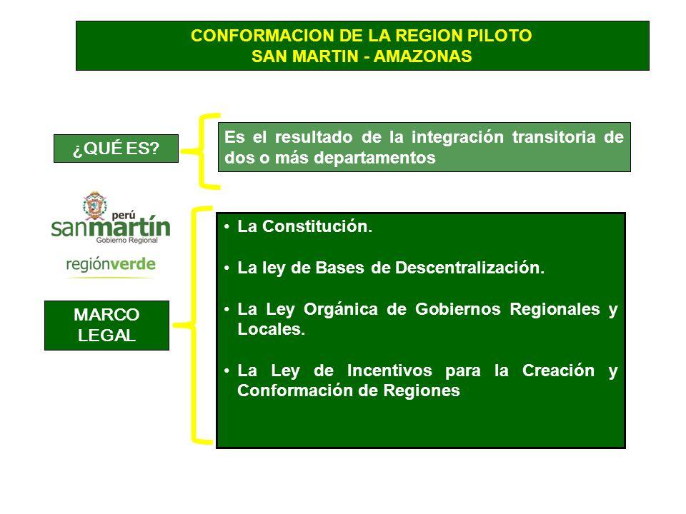 CONFORMACION DE LA REGION PILOTO