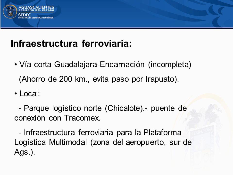 Infraestructura ferroviaria: