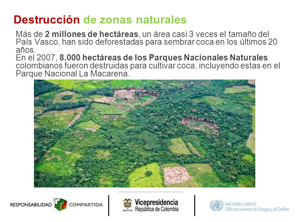 Destrucción de zonas naturales