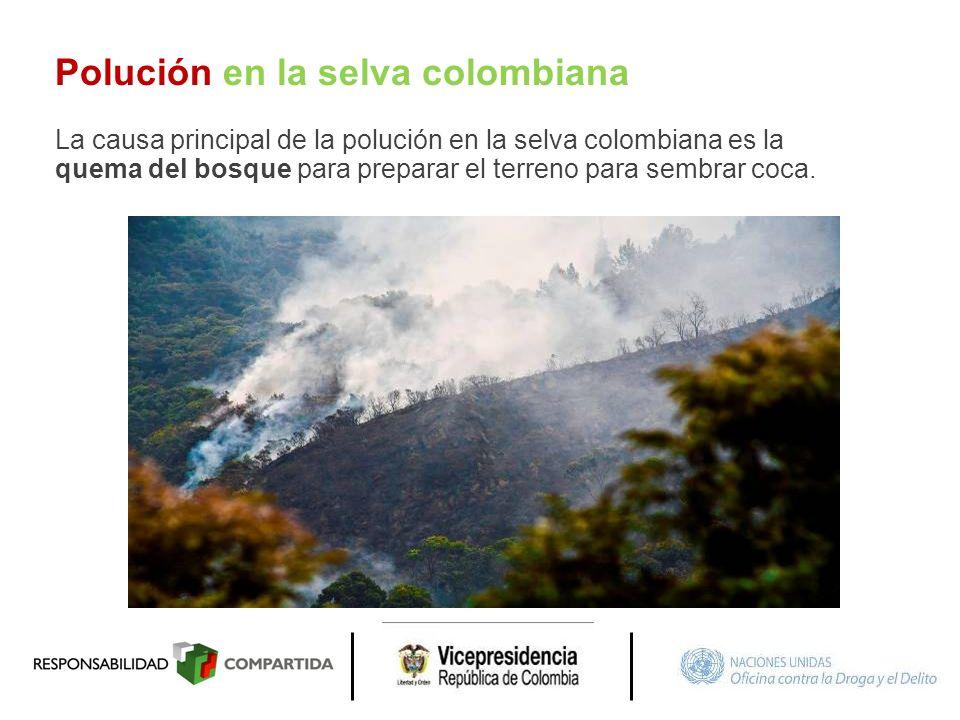 Polución en la selva colombiana