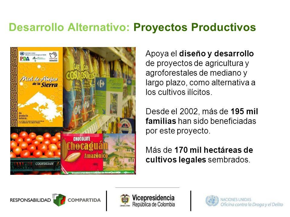 Desarrollo Alternativo: Proyectos Productivos