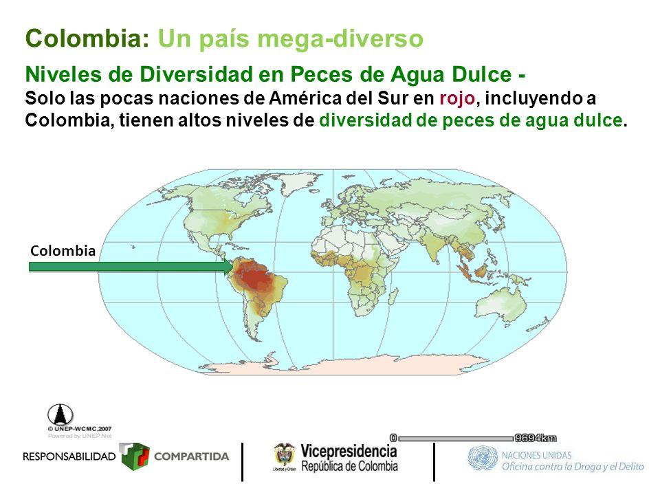Conservaci n en colombia una responsabilidad compartida for Piletas de agua salada en zona sur