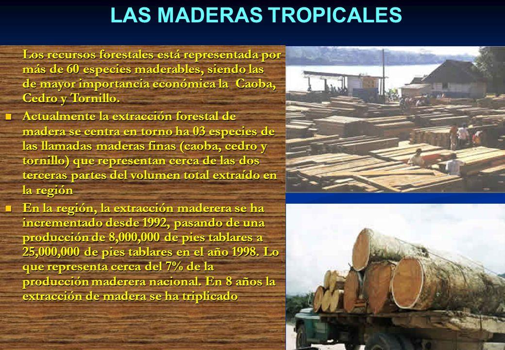 LAS MADERAS TROPICALES