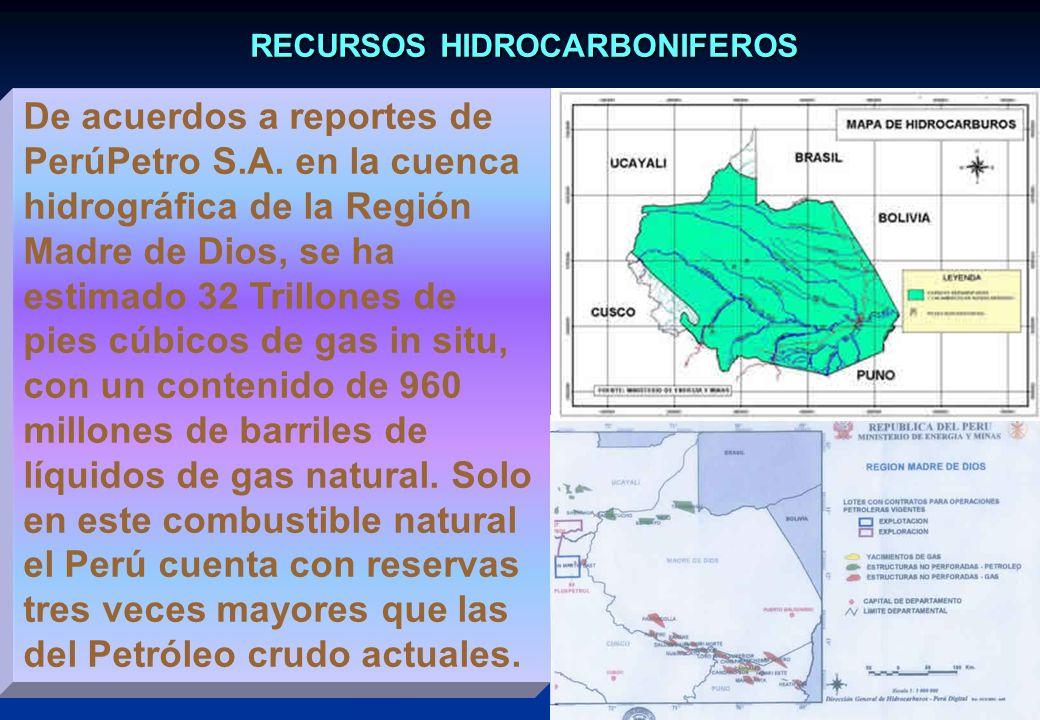 RECURSOS HIDROCARBONIFEROS