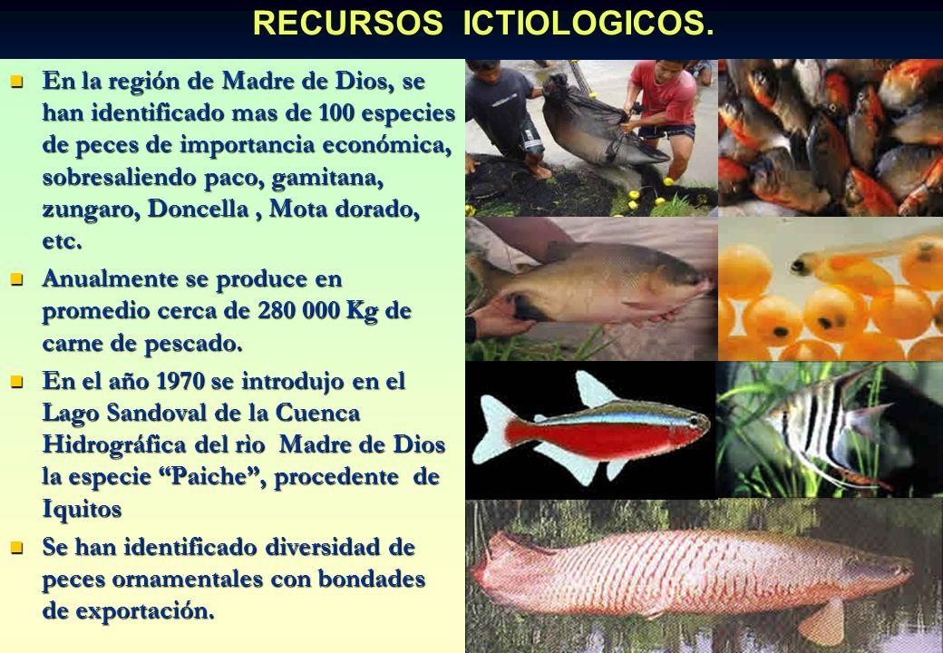RECURSOS ICTIOLOGICOS.