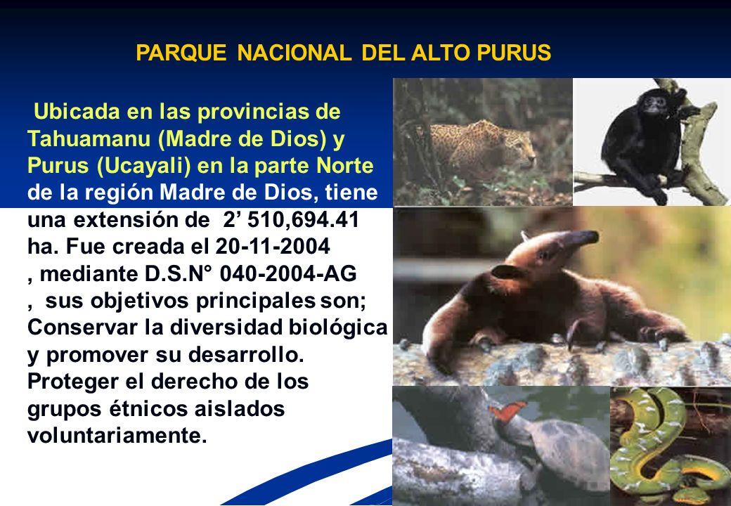 PARQUE NACIONAL DEL ALTO PURUS