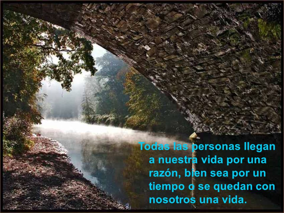 Todas las personas llegan a nuestra vida por una razón, bien sea por un tiempo o se quedan con nosotros una vida.