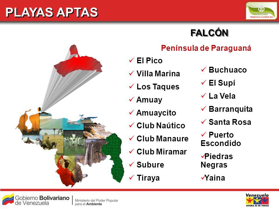 PLAYAS APTAS FALCÓN Península de Paraguaná El Pico Villa Marina