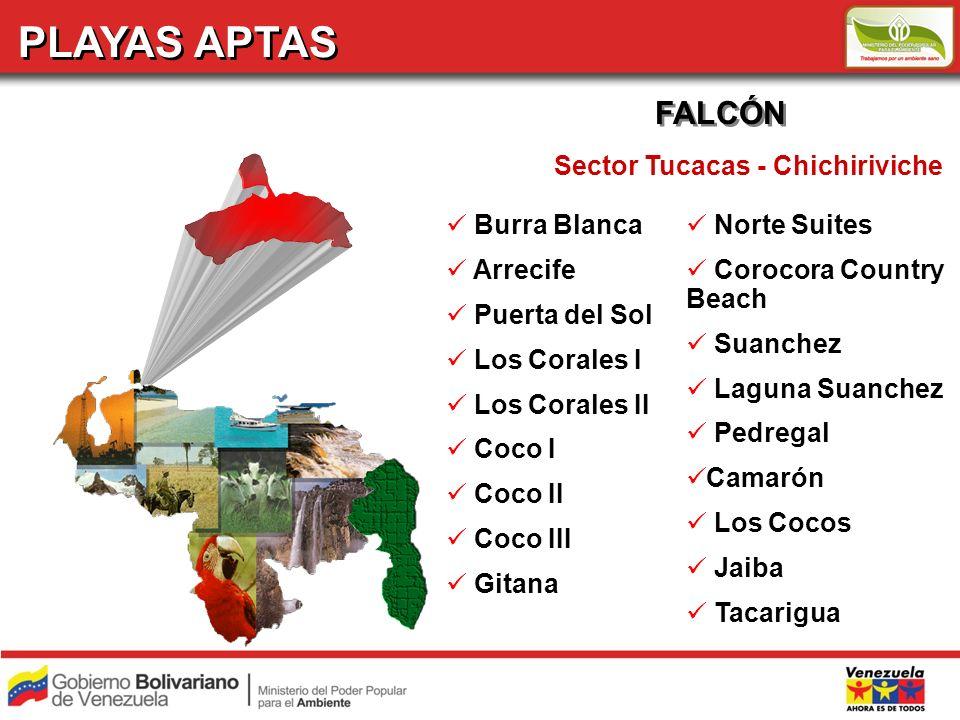 PLAYAS APTAS FALCÓN Sector Tucacas - Chichiriviche Burra Blanca