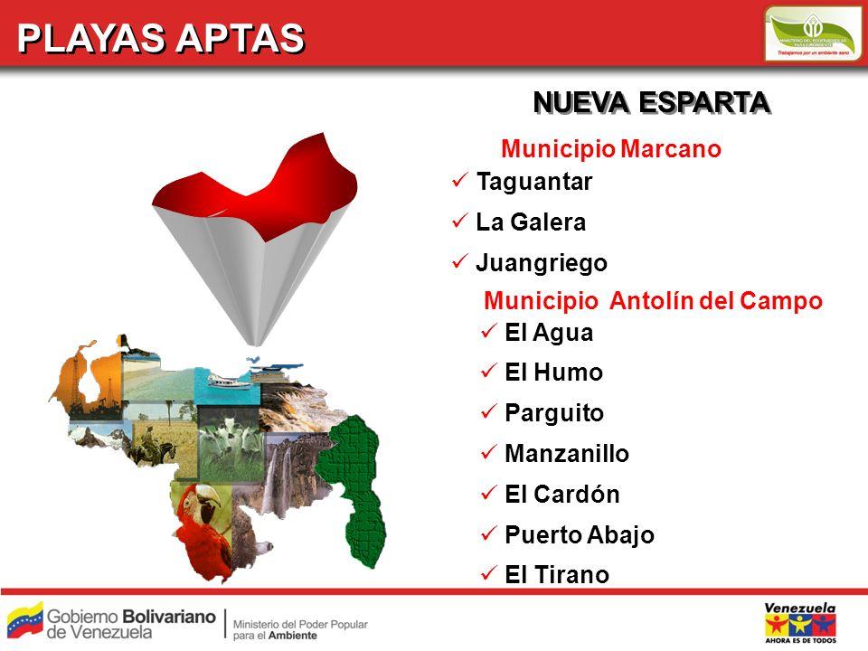 PLAYAS APTAS NUEVA ESPARTA Municipio Marcano Taguantar La Galera