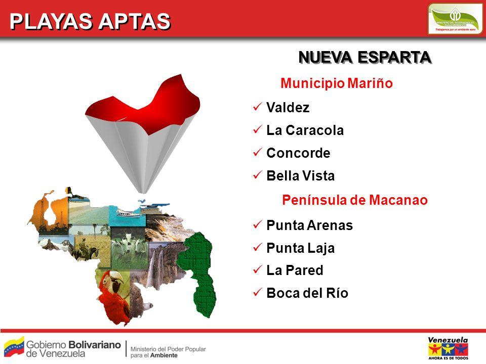 PLAYAS APTAS NUEVA ESPARTA Municipio Mariño Valdez La Caracola