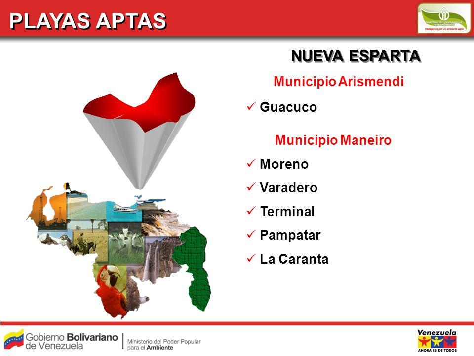 PLAYAS APTAS NUEVA ESPARTA Municipio Arismendi Guacuco
