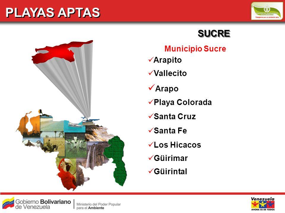 PLAYAS APTAS SUCRE Arapo Municipio Sucre Arapito Vallecito