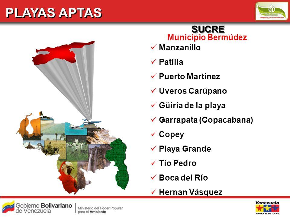 PLAYAS APTAS SUCRE Municipio Bermúdez Manzanillo Patilla