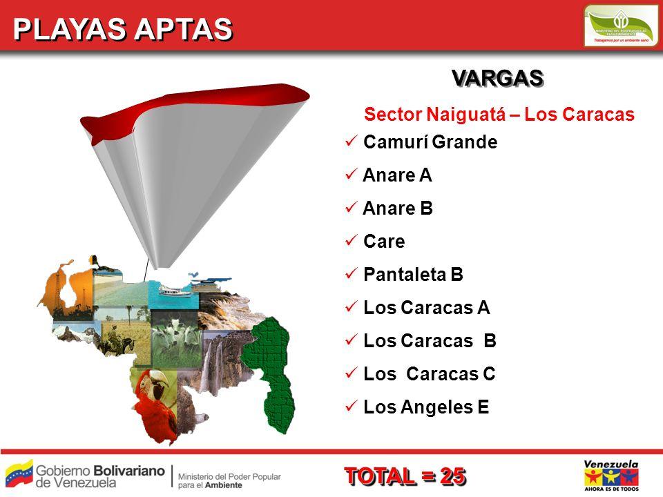 PLAYAS APTAS VARGAS TOTAL = 25 Sector Naiguatá – Los Caracas