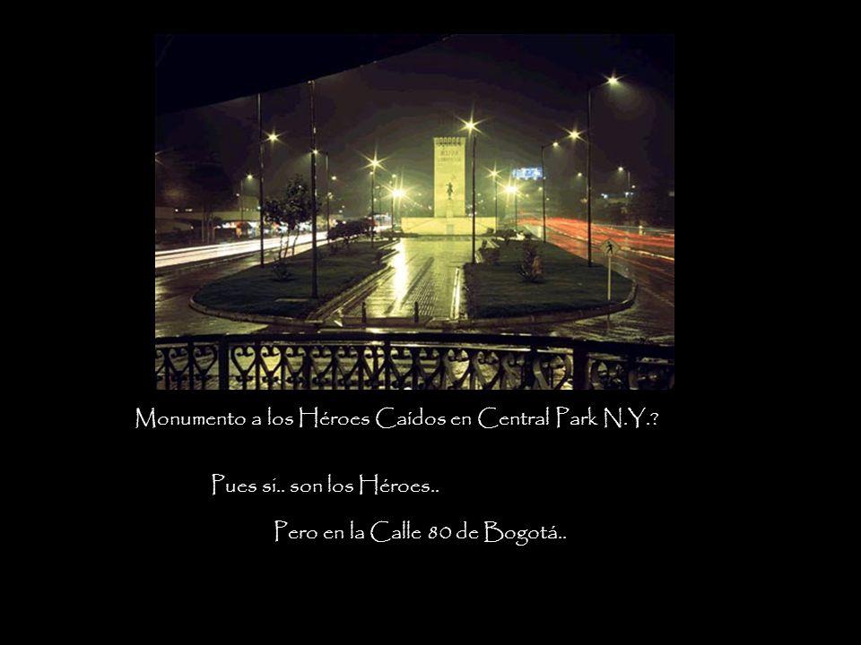 Monumento a los Héroes Caídos en Central Park N.Y.