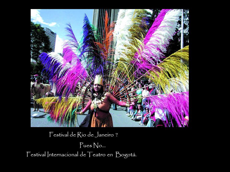Festival de Rio de Janeiro