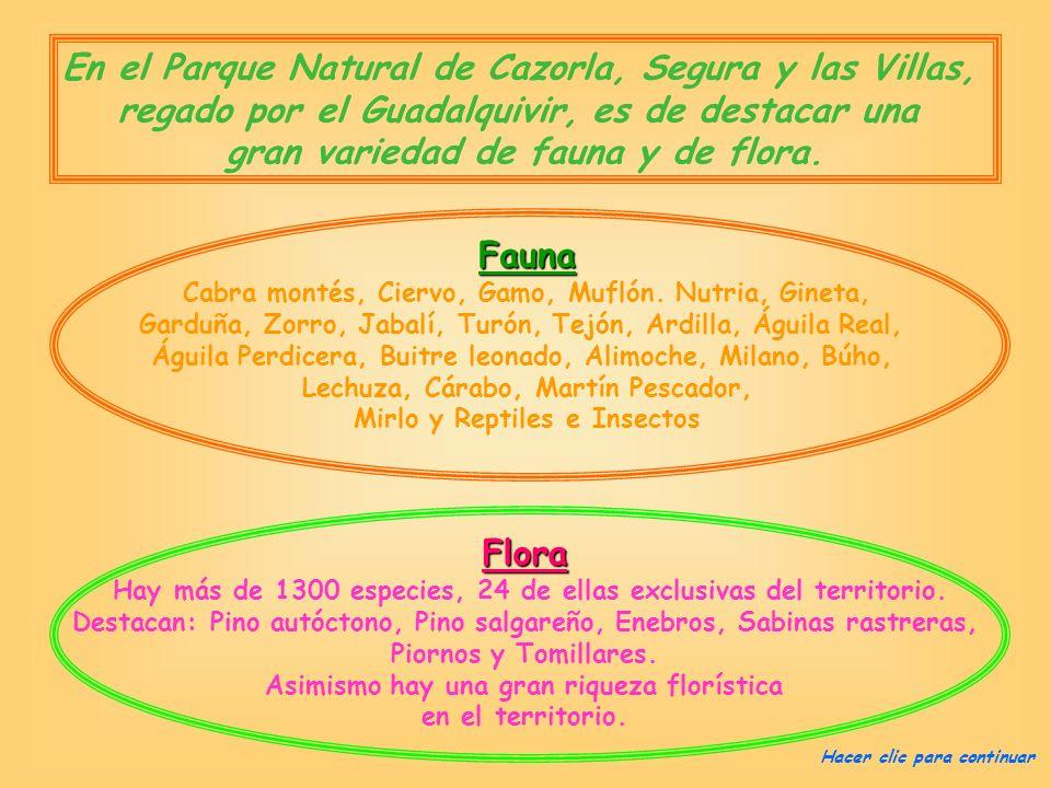 En el Parque Natural de Cazorla, Segura y las Villas,