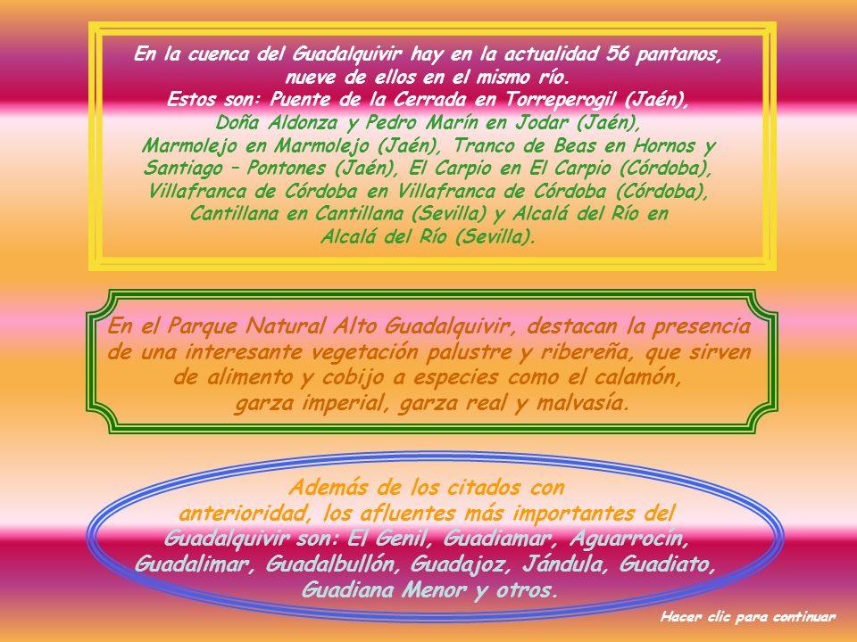 En el Parque Natural Alto Guadalquivir, destacan la presencia