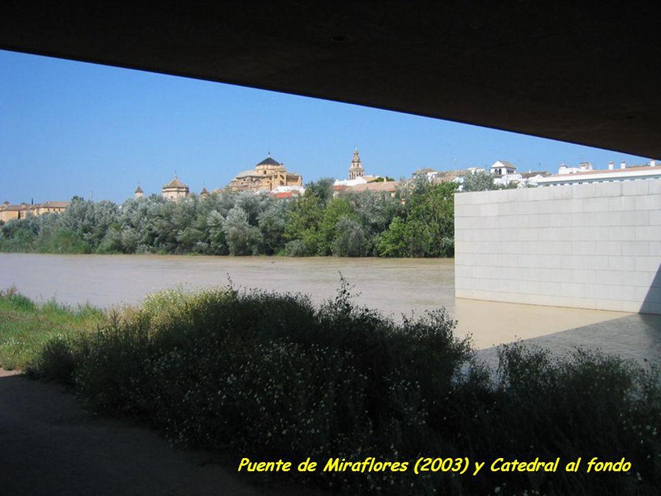 Puente de Miraflores (2003) y Catedral al fondo