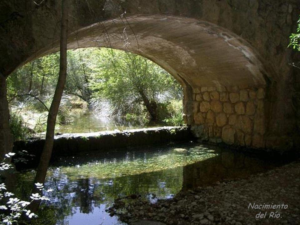 Nacimiento del Río.