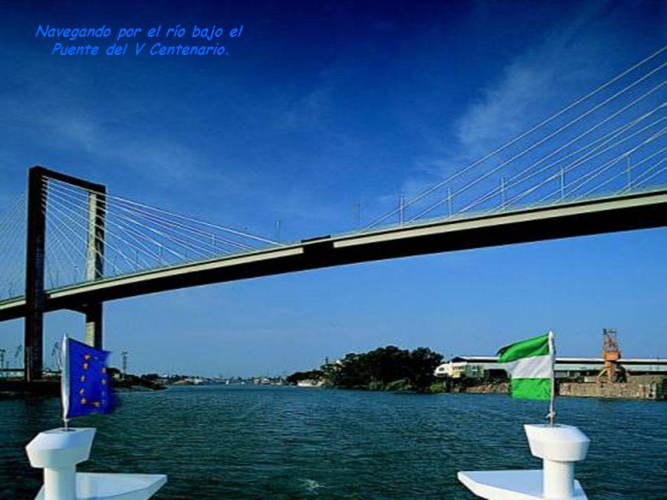 Navegando por el río bajo el Puente del V Centenario.