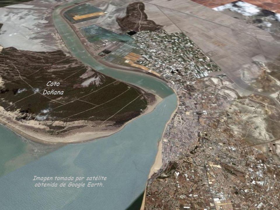 Imagen tomada por satélite obtenida de Google Earth.