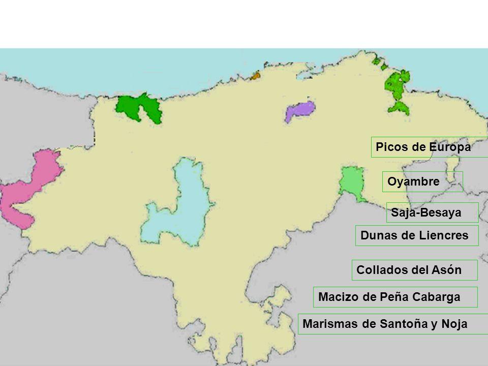 Picos de Europa Oyambre. Saja-Besaya. Dunas de Liencres. Collados del Asón. Macizo de Peña Cabarga.
