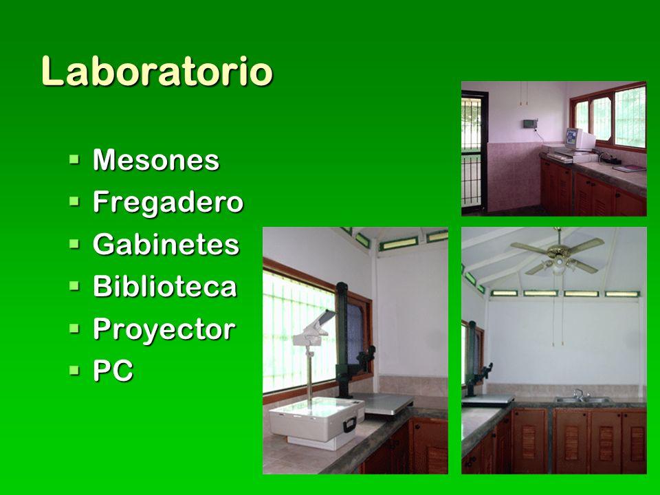 Laboratorio Mesones Fregadero Gabinetes Biblioteca Proyector PC