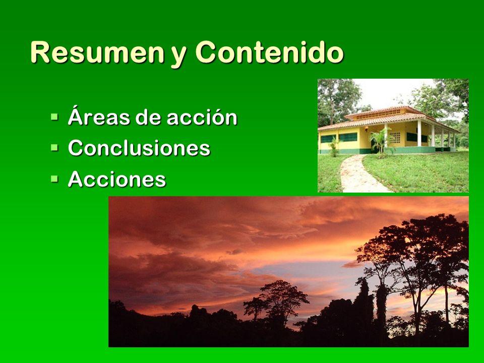 Resumen y Contenido Áreas de acción Conclusiones Acciones